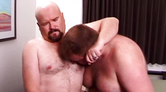 Blowjob loving bear pleasured by a chub
